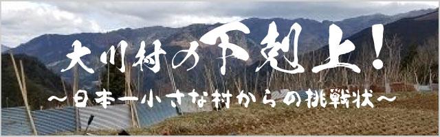 大川村に移住→そして結婚!(定住)