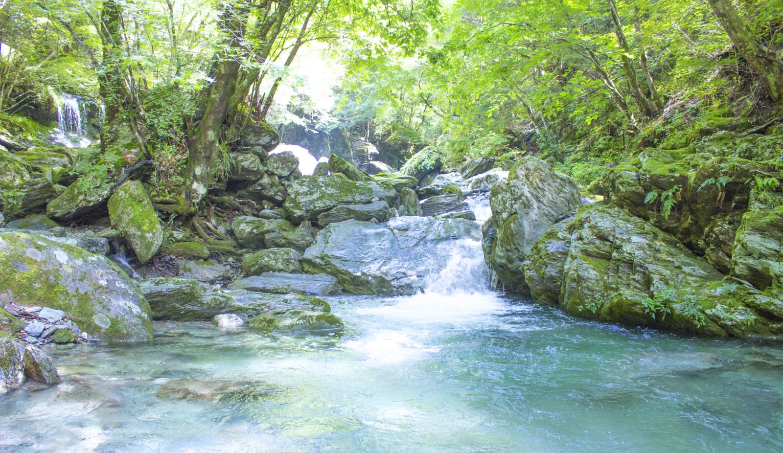 岩を登って小川をわたって!手つかずの自然を大冒険! 大川村で沢歩き