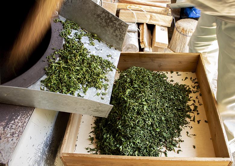 玉緑茶:荒炒り後のお茶の葉