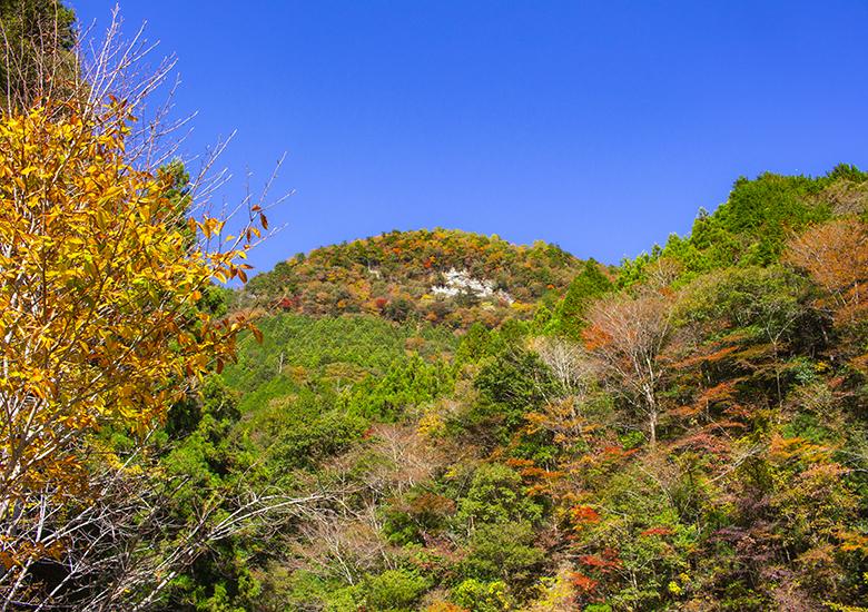 大川村小金滝駐車場からの紅葉