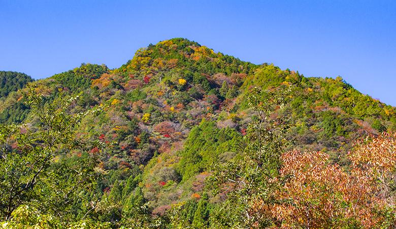 【紅葉】白滝の里からの山の眺め