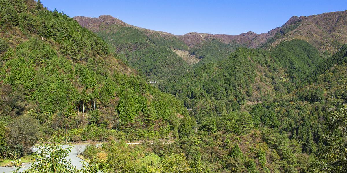 【白滝鉱山トロッコ道】現在の白滝