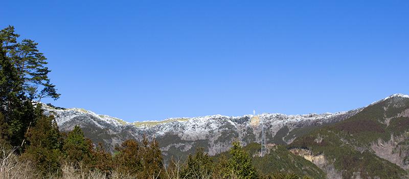 大川村小麦畝から見える雪山