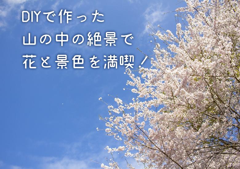 【個人宅にDIYで作った花園で開かれる祭】「大川村さくら祭」今年も開催!