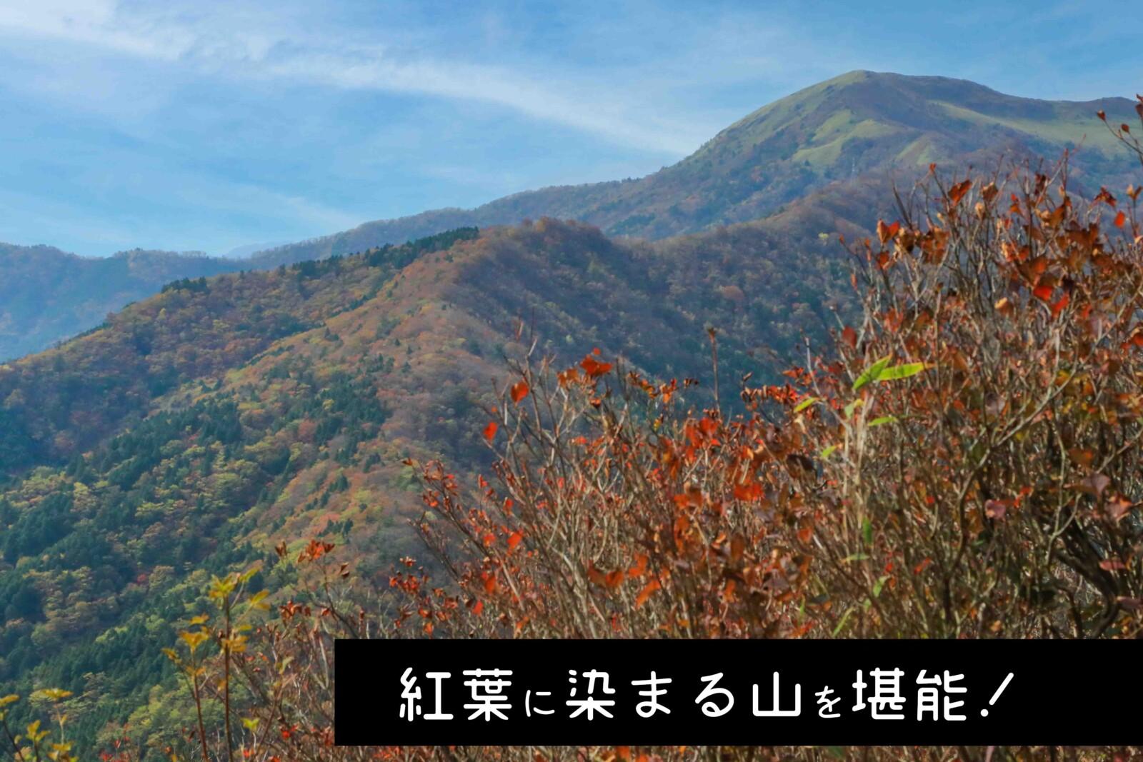 【紅葉に染まる山に会いに行く】三ツ森山縦走登山【初~中級者向け】