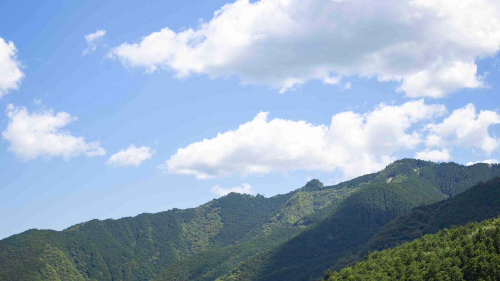 大北川山の眺め
